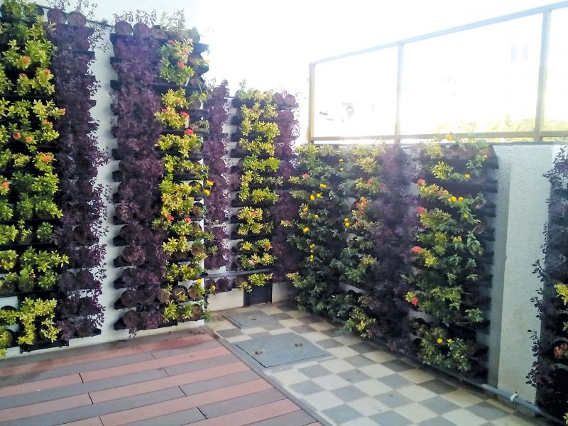 Rashmi Sunil's exhibition in balcony; Vertical Farming (right)