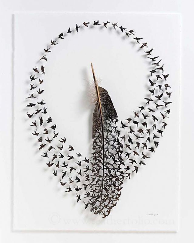 According to Chris Maynard, scissors and scalpels are not just meant for surgeries, but also for carving images out of feathers. Made using real feathers, each piece is backed with transparent elements to keep it sturdy. He doesn't paint on feathers. Whatever you see in his images are shades on the feathers. You can see birds fluttering in his works. He uses scissors and scalpels to cut the feathers. In Chris' words, he keeps the birds alive through these shed feathers. Also, feathers signify scaling heights. So, they also symbolise hope and transformation.