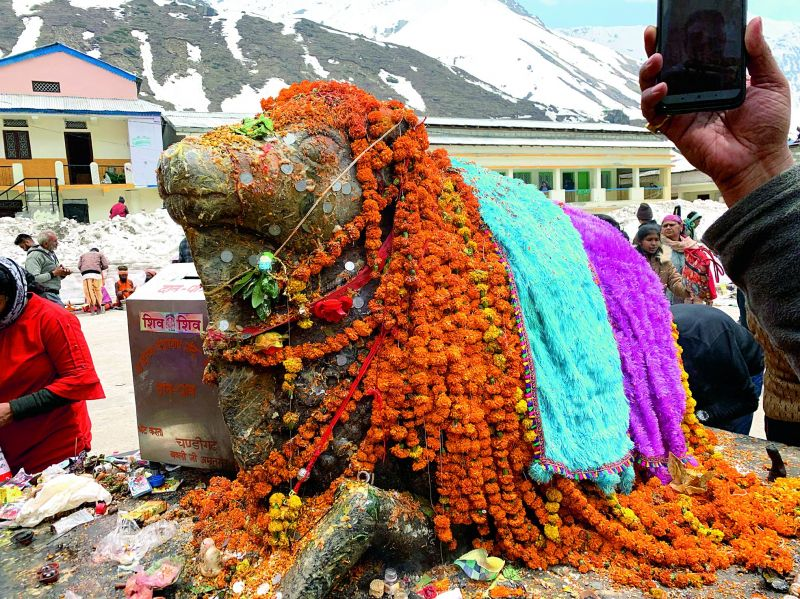 The sacred Nandi at Kedarnath temple