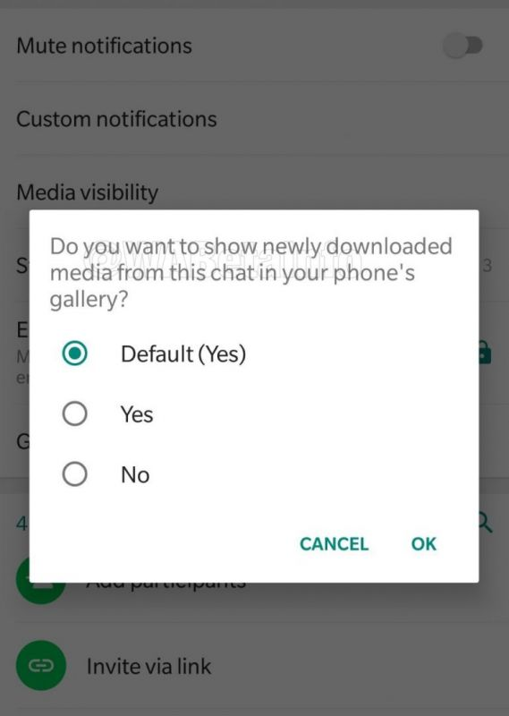 WhatsApp Beta Update: Disable media visibility for