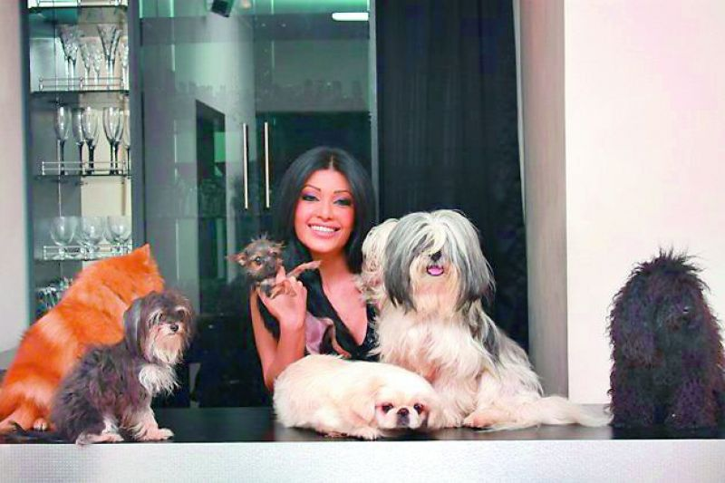 Koena Mitra has an army of Terriers, Poodles, Pekingese — all of them being toy breeds from exotic countries.