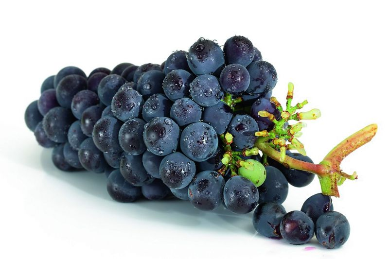 Use of grapes and mushrooms in diet