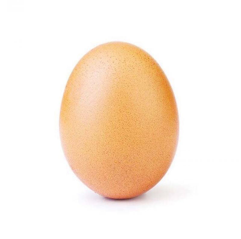 @world_record_egg, the Instagram account behind the confounding egg minced no words while stating its intention.