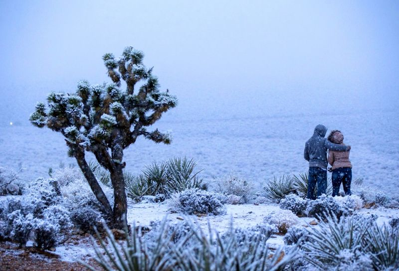 enjoying the snowland view. (Photo: AP)