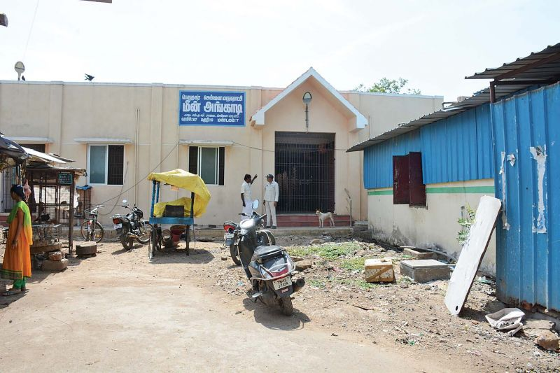 This fish market inaugurated by the CM has been sealed on orders from the Madras High Court since it had been built on the land where a pond had existed sometime ago. (Photo: DC)