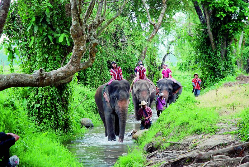 Bareback jumbo ride at Patara in Thailand by Susheela Nair