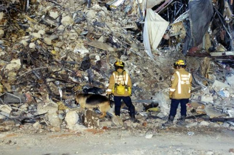 Rescue workers with sniffer dogs make their way through the rubble as they look for survivors. (Photo: FBI)