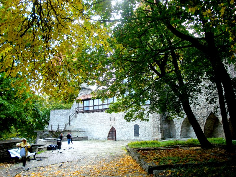 Framed by leaves of gold, the old fort of the city of Vana Tallinn, Estonia (Photo: Jayesh Ganesh)