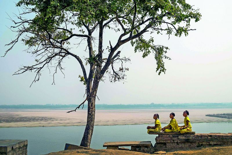 Small children training to be bramhacharis meditate and pray under the tree in Bodh Gaya.