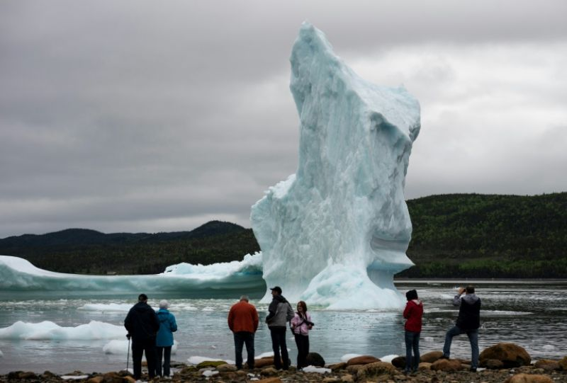 Tourists look at icebergs from the seashore of King's Point -- May to July is peak viewing season, bringing thousands of visitors from around the world to this tiny village of just 600 residents. (Photo: AFP)