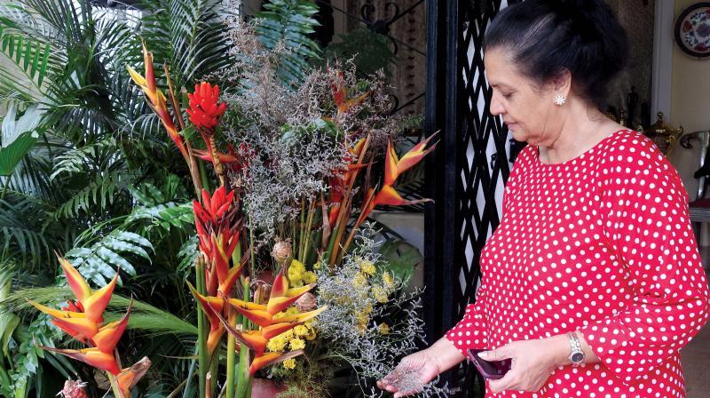 Priya Mascarenhas tends to her labour of love