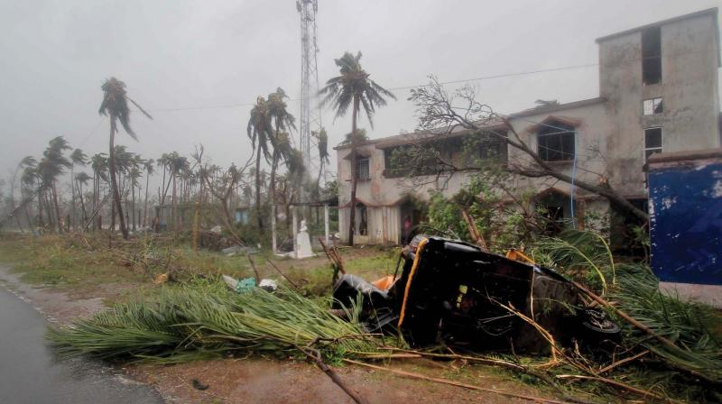 Uprooted trees and an overturned autorickshaw lie by the roadside in Puri a day after the cyclone