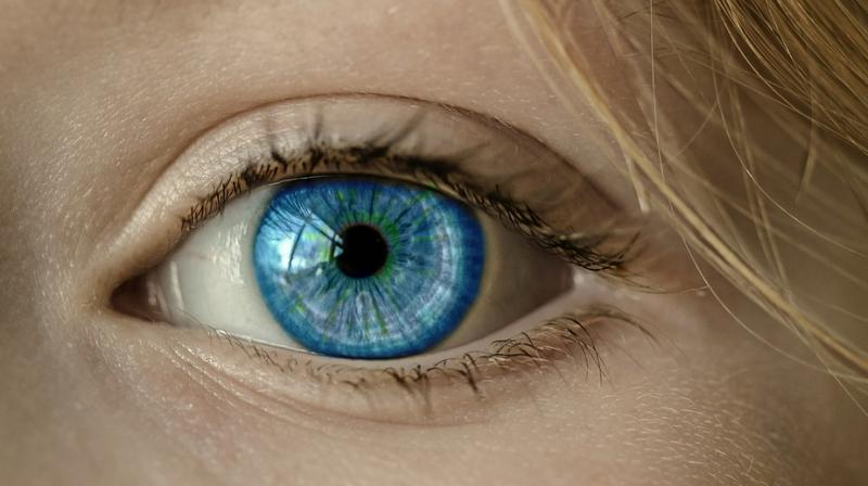 Scientists develop gene therapy that could restore partial vision. (Photo: Pixabay)