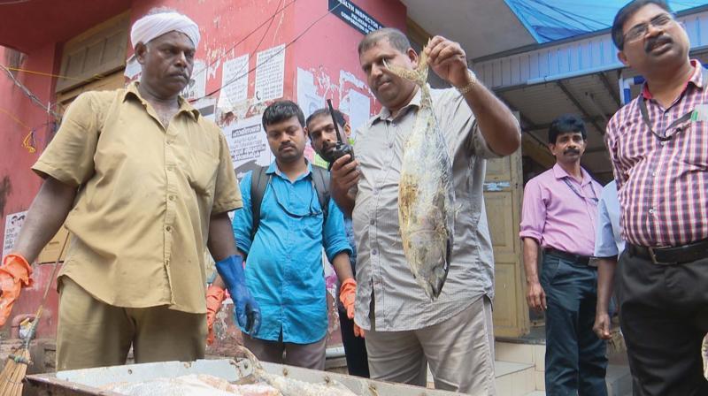 An official picks up a contaminated fish during the joint raid at Connemara fish market at Palayam in Thiruvananthapuram on Monday.