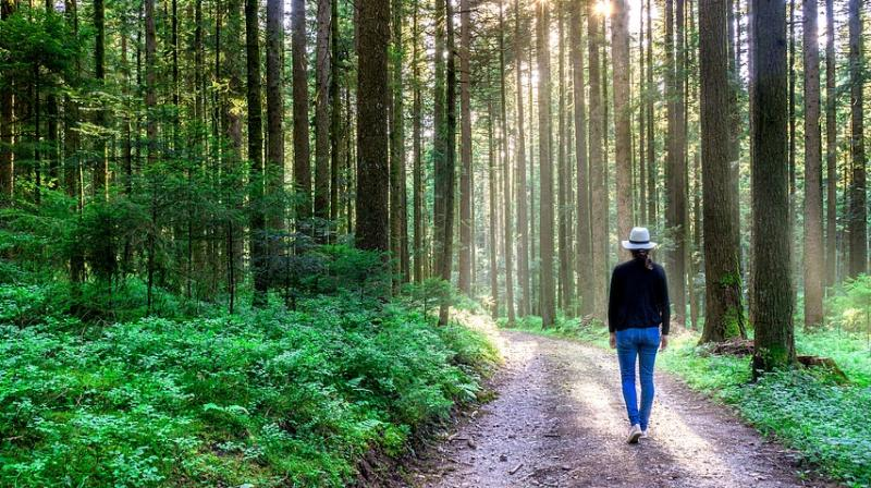Researchers say walking fast could help you live longer. (Photo: Pixabay)