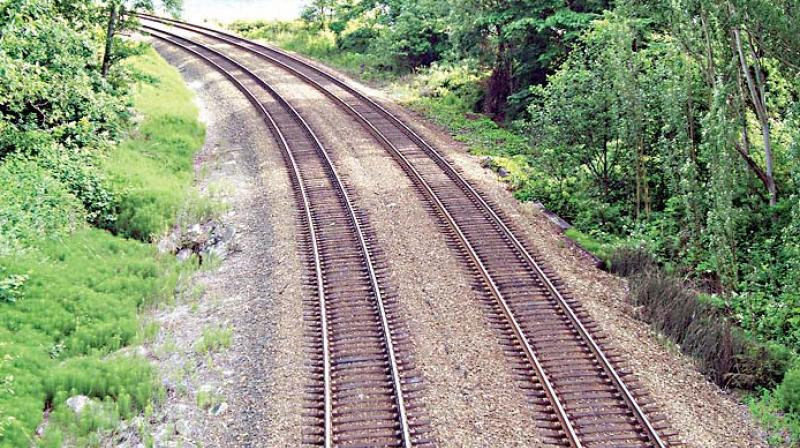 The state government's effort to give a fresh lease of life to the controversial Hubballi-Ankola railway project was stonewalled by the Karnataka State Wildlife Advisory Board, which met here on Wednesday.