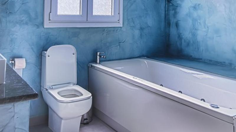 "The suspect ""did his business and didn't flush it"" during the October break-in in the city of Thousand Oaks, said Detective Tim Lohman of the Ventura County Sheriff's Office. (Photo: Pixabay/Representational)"
