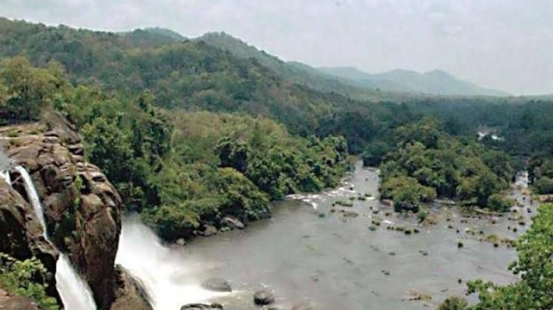 State chairman of the Vedhi M.N. Jayachandran said that the BMCs are not properly functioning in any of the local bodies in the state.