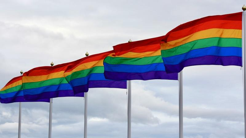 The flag was used since 1978, but only in 1994 did it become a symbol for LGBTQ pride.  (Photo: Pixabay)
