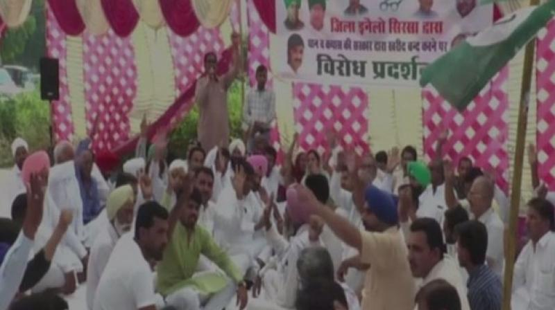 The protesters demanded the Haryana government to increase the Minimum Support Price (MSP) of the crops and to improve the condition of the farmers.  (Photo: ANI)