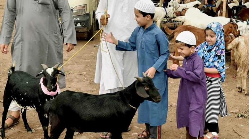 Muslims slaughter a sacrificial animal — perhaps a sheep or goat — as a symbol of Abraham's willingness to sacrifice Ishmael. (Photo: PTI)
