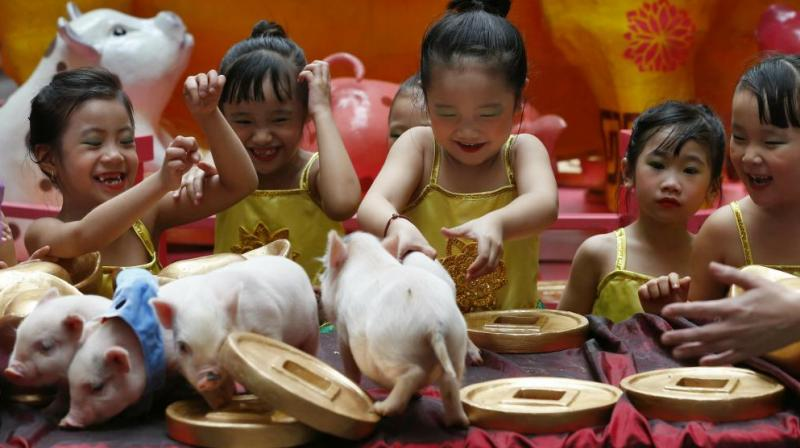 Girls play with live Teacup pigs, at the start of celebrations for the Lunar New Year, in Manila, Philippines. (Photo: AP)