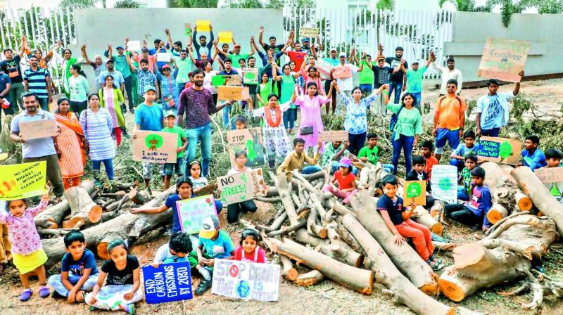 The sight of axed trees spread along the road on both sides outraged residents, more of whom joined the collective.