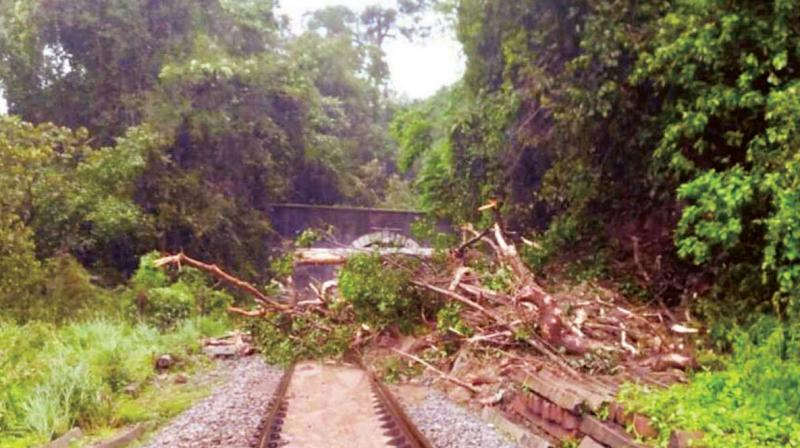 Fresh landslide on tracks in Sakleshpur of Hassan brought train services to a halt on Tuesday