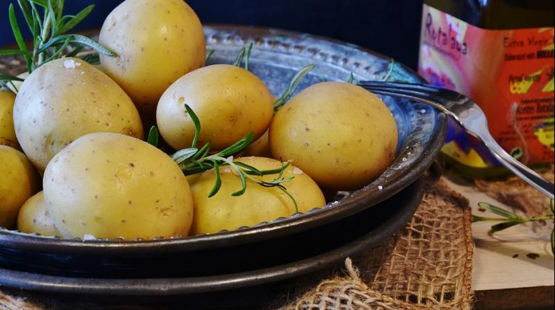 Eating potatoes helps you lose weight faster than calorie-counting