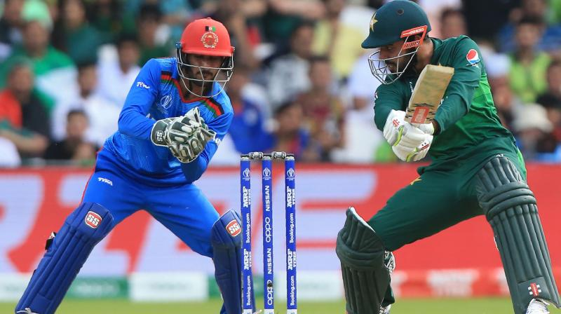 Man-of-the-match Imad (49 not out) and Shadab Khan (11) put on 50 for the seventh wicket to revive their hopes. (Photo: AFP)