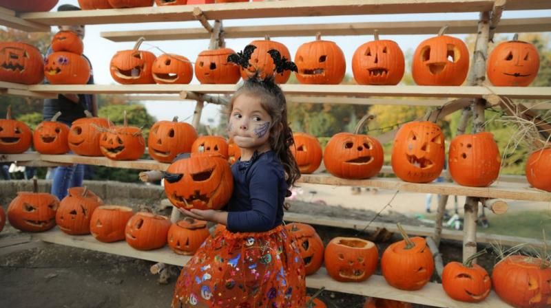 The finished pumpkins were displayed on a 4-meter-high and 100-meter-long scaffold. (Photo: AP)