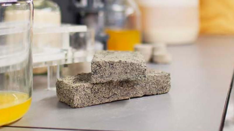 The grey bricks are produced in a lab over eight days using urine, calcium, sand and bacteria. Fertilizers are also produced during the processes. (Photo: University of Cape Town)