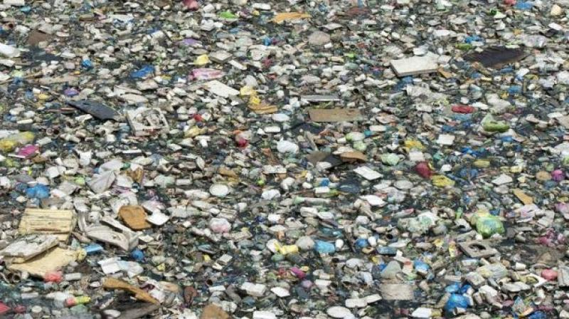 Global plastic production has grown rapidly, and is currently more than 400 million tonnes per year (Photo: AFP)