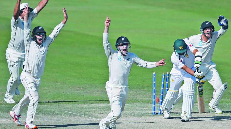 New Zealand players celebrate a Pakistan wicket during the fourth day of first Test