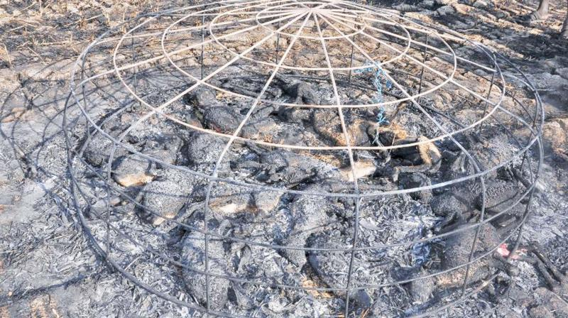 The fire spread in wind and engulfed some goats. In the mishap, 18 goats were charred to death.