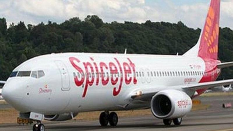 SpiceJet had the third- largest market share in the quarter, unchanged from the previous three months, according to the airline regulator. (Photo: Representational Image)