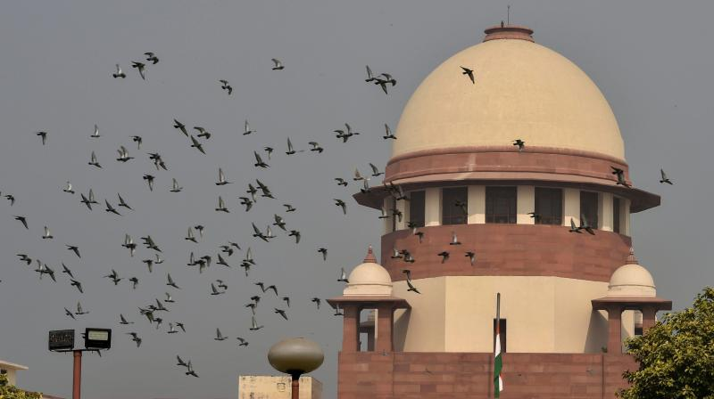The 5-judge bench will constitute the Chief Justice, Justice SABobde and Justice DYChandrachud. (Photo: PTI)