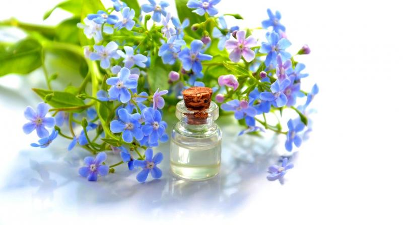 Essentials oils are light sensitive and therefore, should be stored in tightly capped amber or coloured bottles away from extremes of heat or cold. (Photo: Representational/Pexels)