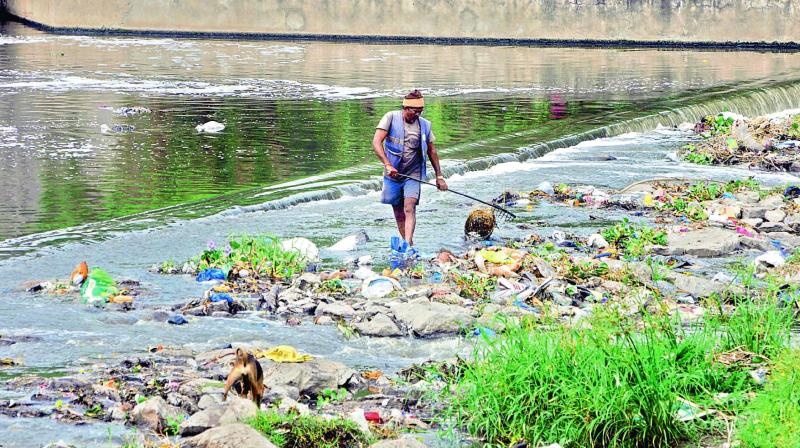 Contamination of rivers and land soil with antibiotics is caused by the discharge of untreated medical waste into domestic sewers and aggravated by the lack of a sufficient number of waste management treatment plants.
