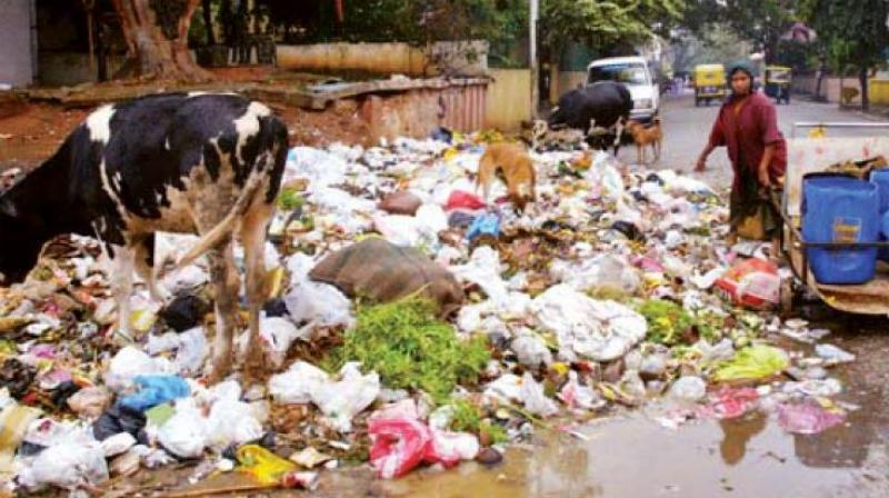 With the incessant rains, the unsegregated trash has been degrading faster than it is being transferred, making the entire area reek of rotting garbage. (Representational image)