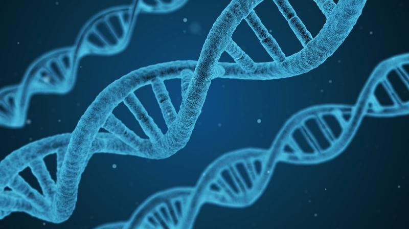 Neuroscientists Illuminate Role Of >> Scientists Discover The Depression Gene
