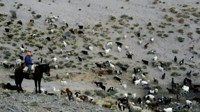 Climate change has altered the entire cycle of life in the region. (Photo: AFP)