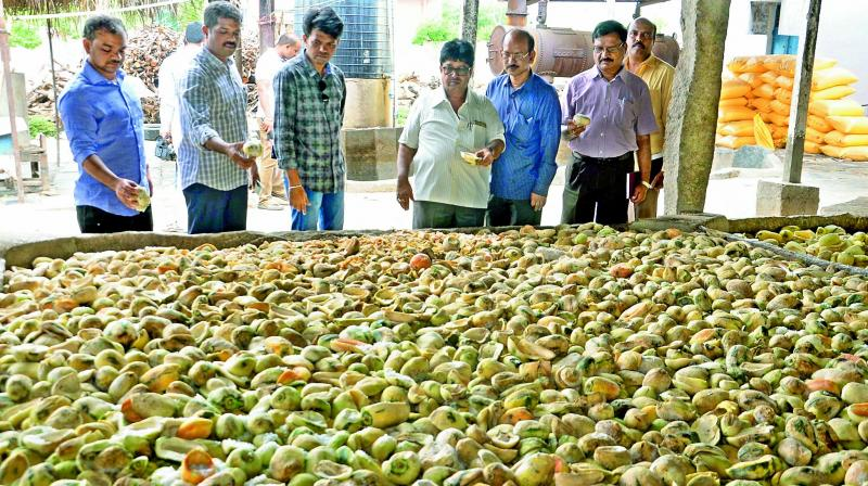 Food Safety authorities and tahsildar inspect the Agro industry which failed to maintain minimum hygiene in Anantapur. (Photo: DC)