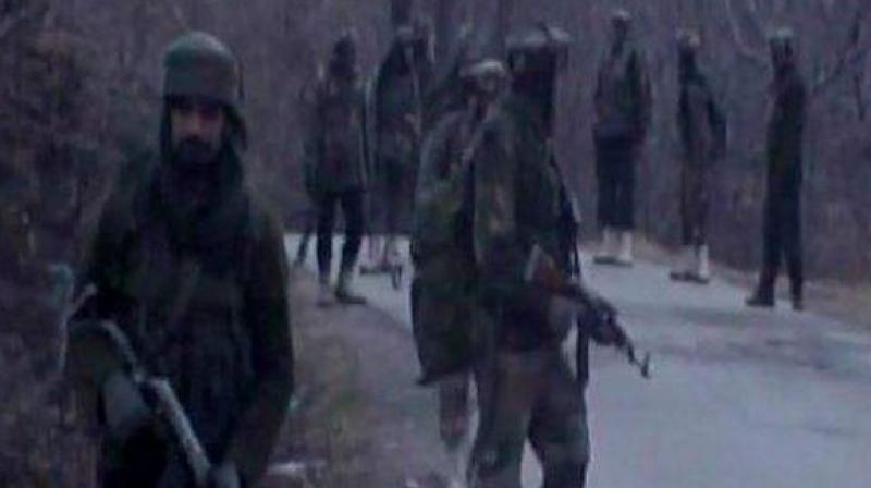 Security forces launched a search operation in the area following information about the presence of militants there, a police spokesman said.  (Image: ANI/Representational )