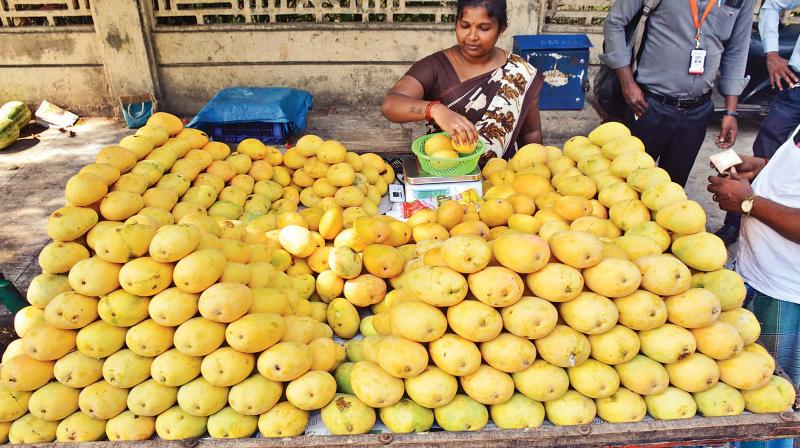 A vendor selling mangoes on Dr Radhakrishnan road in the city.(Photo: DC)