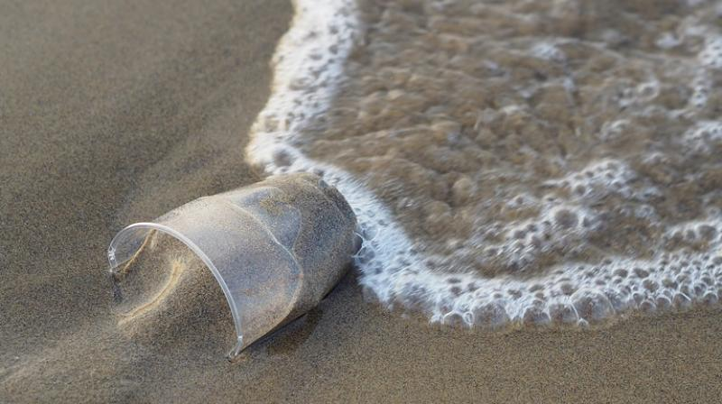 Some eight million tonnes of plastic is dumped into oceans every year. (Photo: Pixabay)