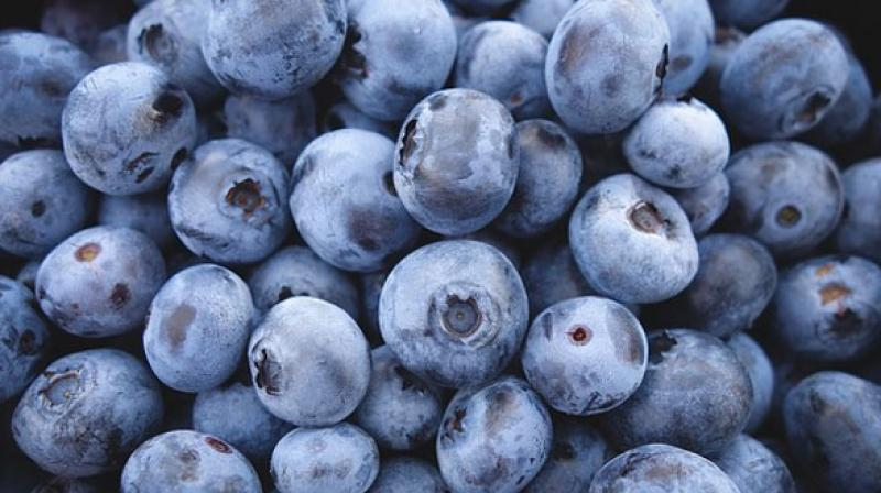 Two doses of concentrated blueberry juice helps to prevent oxidation damage to the brain's messenger chemicals. (Photo: Pixabay)