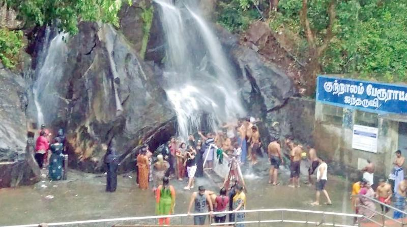 Falls at Courtallam too jumped back to life on Monday with a moderate flow due to the good showers in the Western Ghats.