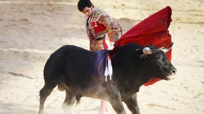 Bullfighting is a 500-year-old tradition brought to the country by Spanish conquistadors.(Photo: AFP)