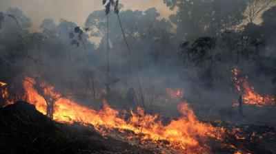 A fire burns trees and brush in the Vila Nova Samuel region which is part of Brazil's Amazon. (Photo: AP)